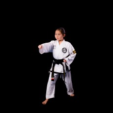 I've been taking tkd for seven years and benefitted in many ways. This activity has allowed me to be more self confident and have a larger range of stamina. Besides tkd, I've enjoyed other activities such as playing an instrument in band and taking dance classes.