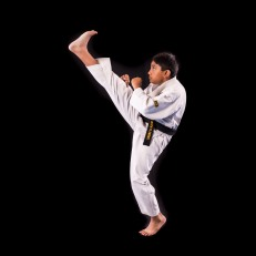 I am 11 years old. I have learned a lot of things in Taekwondo, but the most important was self discipline. I am really glad I joined Taekwondo, I have learned so much.